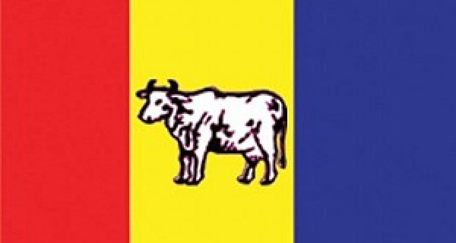 RPP-Nepal to boycott CA meeting