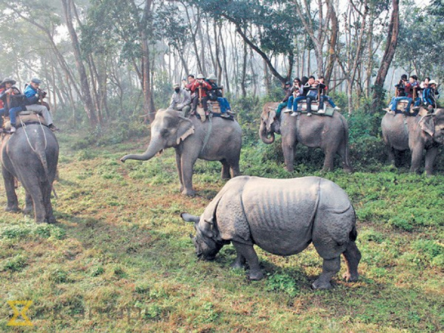 Elephant keepers at Sauraha used to earn Rs 100,000 per month before the Covid-19 pandemic upended their business